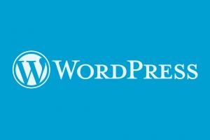 Lỗi không hiển thị trình Editor WordPress Admin